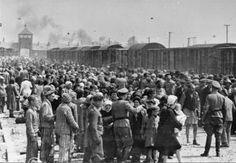 Los trenes preparados para llevar a los prisioneros.