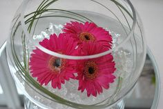 Lucy's flower studio: Gerbera Fish bowl