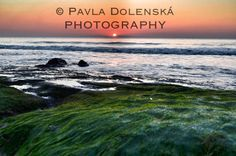 Pavla Dolenská Photography