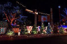 Stanley Park Bright Nights 2012, via Flickr.