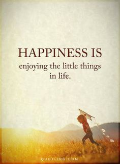Happiness Quotes Happiness is enjoying the little things in life.