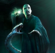 Lord Voldemort and nagini Harry Potter Facts, Harry Potter Love, Harry Potter Characters, Harry Potter Fandom, Draco Malfoy, Severus Snape, Hermione Granger, Lord Voldemort, Friends Come And Go
