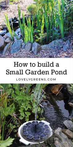 Tips on how to build a small pond to attract frogs and other wildlife into the garden. Includes information on placement, size, materials, and maintenance. DIY video included decor diy videos How to build a Small Garden Pond Small Garden, Backyard Landscaping, Water Garden, Backyard Garden, Small Ponds, Wildlife Gardening, Outdoor Gardens, Ponds For Small Gardens, Gardening Tips