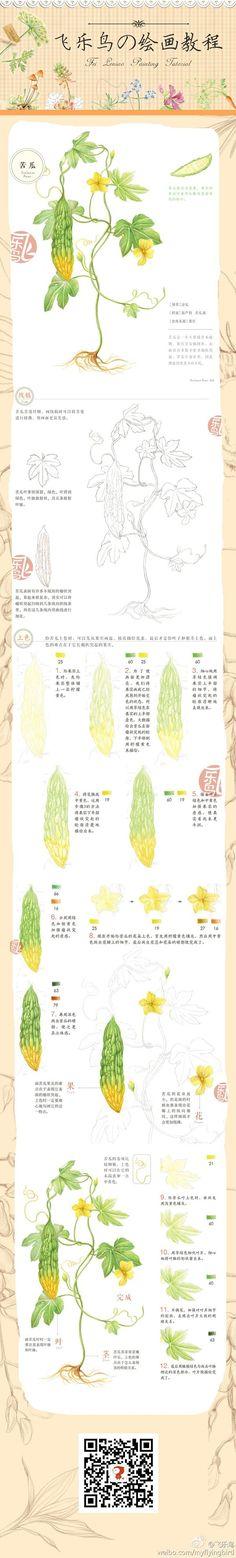 飞乐鸟教程——苦瓜@爱图图采集到绘画教程(595图)_花瓣插画/漫画