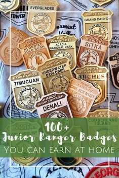 100 Junior Ranger Badges you can earn from home! Assateague Island National Seashore, Glacier Bay National Park, Katmai National Park, Kids Activities At Home, Girl Scout Activities, Kids Crafts, Kennesaw Mountain, California National Parks, California Travel