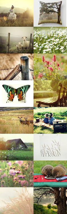 in the meadow by Shelly Wason on Etsy--Pinned with TreasuryPin.com