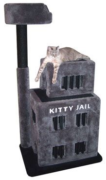 """Deluxe Jail Cat Condo  At 5' tall and 3' wide, this deluxe 3-level cat condo has 9 windows with carpeted """"jail bars"""" in them, 2 doorways, a sisal rope scratch post with a cozy bed at the top, and an inlaid title on the front. It has holes between levels and a wide base to prevent the unit from toppling.  - Dimensions 60""""Hx35""""Wx25""""D  - Weight 82lbs  - Material Plywood, Solid Pine (Posts), 100% Nylon Carpet"""