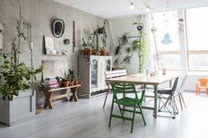 Plant-filled living space