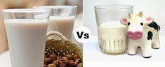 ¿Por qué tomar leche vegetal y no leche de vaca pasteurizada? Algunas recetas de leches vegetales
