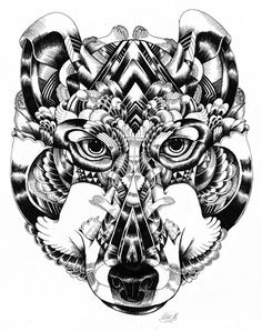 Animal drawings Collection | dezignHD