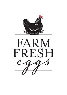 Free Farm Fresh Eggs printable sign - thisNZlife Vinyl Crafts, Vinyl Projects, Chicken Signs, Farm Logo, Diy Wood Signs, Vinyl Designs, Silhouette Design, Lettering, Typography
