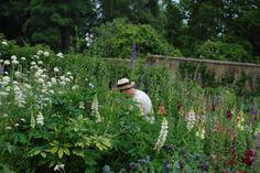 Working in the Victorian Kitchen Garden at Gravetye Manor
