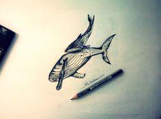 Draw whale 2014