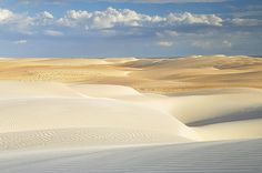 Dunes of Rosado - Rio Grande do Norte