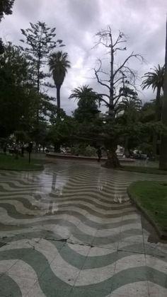 Plaza Victoria, invierno 2014 Valparaíso,Chile