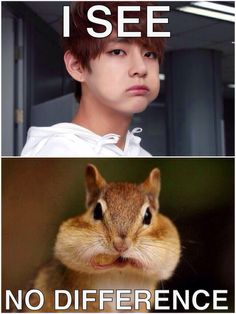 Taehyung and his chubby cheeks ;D ♡ #KPOP #FUNNY