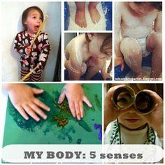 My Body Unit Lesson Plan | 5 Senses
