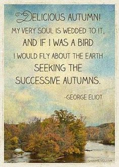 Autumn will arrive this Sunday,Sept.21st.....I am thrilled!