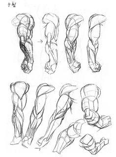 Anatomy drawing Brownie dragon quest v brownie Arm Drawing, Human Anatomy Drawing, Human Figure Drawing, Figure Drawing Reference, Art Reference Poses, Anatomy Reference, Drawing Poses, Drawing Tips, Arm Anatomy