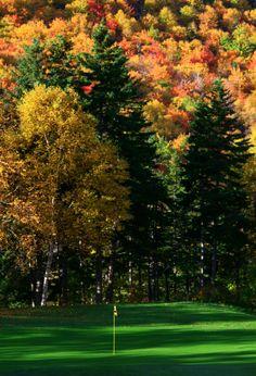 Fall Golf.