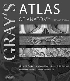 Download the Book: Gray's Atlas of Anatomy 2nd Edition PDF For Free, Preface: A working knowledge of anatomy is not an 'optional extra' for health care p...