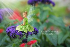 #Tinkerbell #fairy #photography