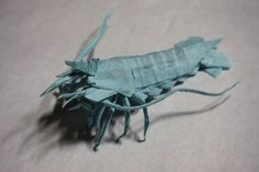 All sizes | Kota Imai - Shrimp V2 | Flickr - Photo Sharing!