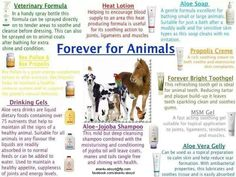 check out this link to a breif a-z of uses of aloe for horses http://www.healeraloe.flp.com/
