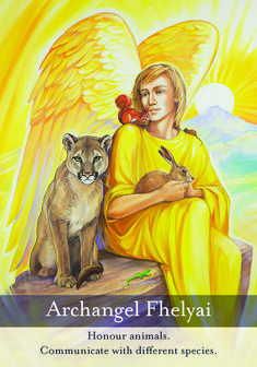 Personal Prayer, Signs From The Universe, Miracle Prayer, Angel Guidance, My Guardian Angel, Taurus Woman, Doreen Virtue, Angels Among Us, Angel Cards