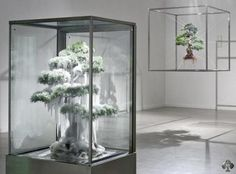 Makoto Azuma bonsai art