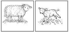Jonge dieren en hun ouders - Werkje op MontessoriNet
