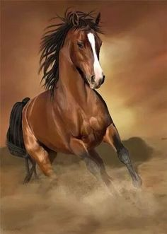 Bay Quarter Horse running. Gorgeous horse photography or is this a painting? Amazing shiny coat, beautiful face with white blaze. Horse Photos, Horse Pictures, Animal Pictures, All The Pretty Horses, Beautiful Horses, Animals Beautiful, Beautiful Things, Cute Horses, Horse Love