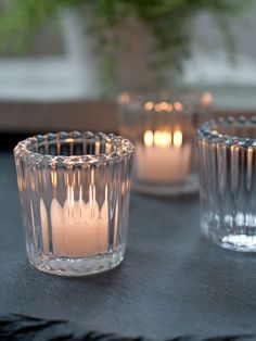 Timeless Glass Tealights - Nordic House = 3 for £9.95