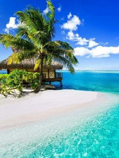Tahiti - French Polynesia in the South Pacific Ocean.