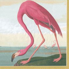Audubon Birds Paper Dinner Napkins - 20 per package  Design inspired by the American Flamingo, Roseate Spoonbill, Blue Crane and Louisiana Heron from The Birds of America by John James Audubon (1785-1851). © Devonshire Collection, Chatsworth. Reproduced by permission of Chatsworth Settlement Trustees.
