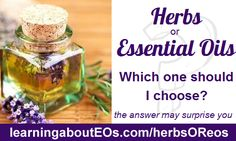 Herbs or Essential Oils – Which one Should I Choose
