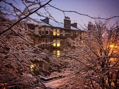 The view from my flat on a snowy afternoon in Hyndland, Glasgow