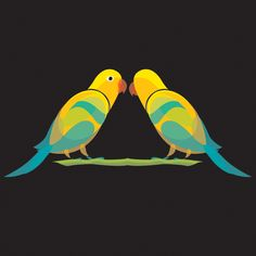 Fluid Animals: Budgies Inseparable || Ben the Illustrator || http://bentheillustrator.prosite.com