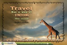 """ Travel Has a wy of stretching the mind. "" - Ralph Crawshaw -  #travel #travelquotes #quoteoftheday #traveltheworld #travel2016 #tourcenter #animals #amazing #world #flights #bestflyingoffers #wildworld #travelgram #life #traveling  Fly with our Exclusive offers: http://www.tourcenter.co.uk/"