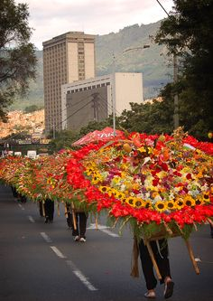 Silleteros at the Medellin Flower Festival - Flower Vendors Colombia Travel, Festivals Around The World, Places Around The World, Around The Worlds, Latin Travel, Colombian Culture, Colombia South America, Flower Festival, Yule