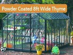 """8ft5"""" wide in multiple lengths. Premium Greenhouse. Painted version of the Thyme. Thanks to it's elegant 12"""" wide glass panels, the Thyme is immensely strong, combining strength with an elegant look."""