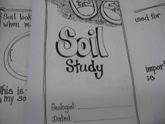 Third Grade Thinkers: Science Investigation: A Soil Study