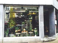 Brut,  une boutique atypique de plantes. Non pas un fleuriste, mais un vrai magasin de plantes d'intérieur au charme rétro, le tout accompagné de quelques meubles.