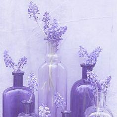 Purple Love, All Things Purple, Pastel Purple, Purple Rain, Shades Of Purple, Periwinkle, Light Purple, Purple Flowers, Violet Aesthetic