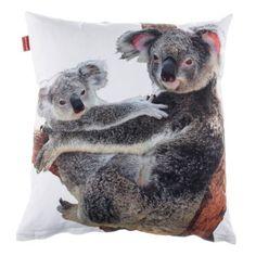 Potah D&F Koala 43x43 cm