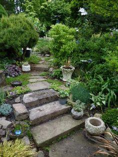 READER PHOTOS! Betsy's garden in New York   Fine Gardening