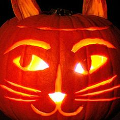 Here are fun, age-appropriate, DIY ideas for creating a feline jack-o-lantern this Halloween.
