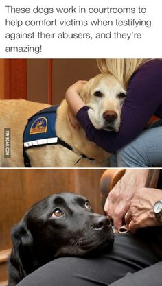 """""""Do you swear to be a good boy, a wholly good boy, and nothing but a good boy?"""""""