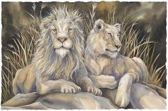 Bergsma Gallery Press :: Paintings :: Natural Elements :: Wild Land Animals :: Wild Cats :: Untamed Spirit - Prints