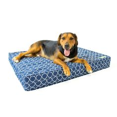 Dog Bed - Royal Blue   Orthopedic Gel Memory Foam - Made in the USA   Durable 100% Cotton Canvas Cover   Waterproof Encasement   Machine Washable   Small, Medium & Large Dogs